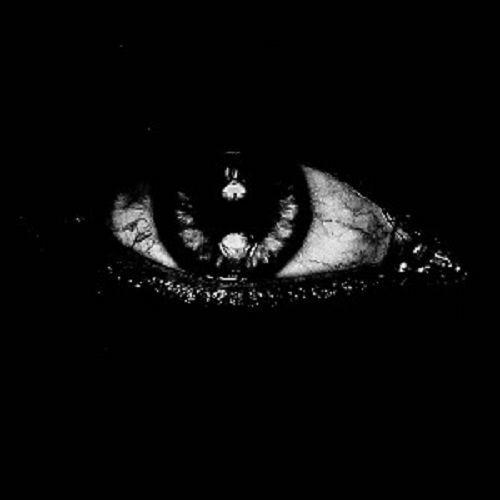 ref11's avatar