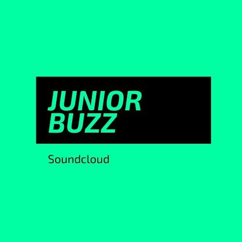 Juniorbuzz's avatar