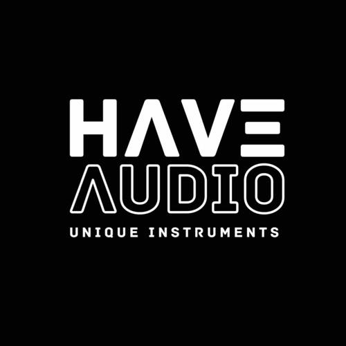 HAVEAUDIO's avatar