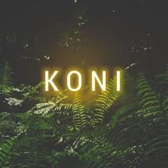 xr4_koni