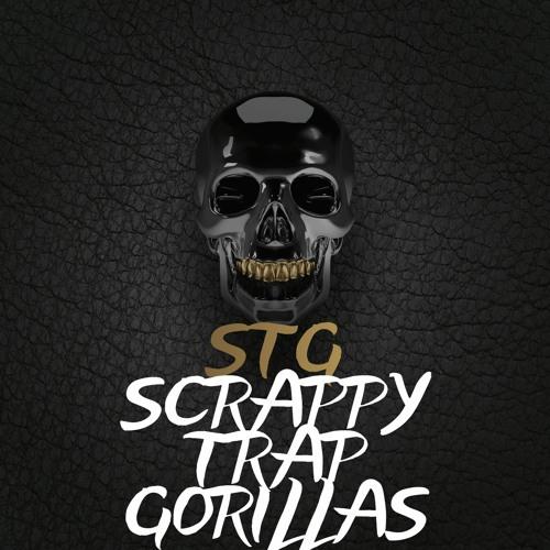 STG's avatar
