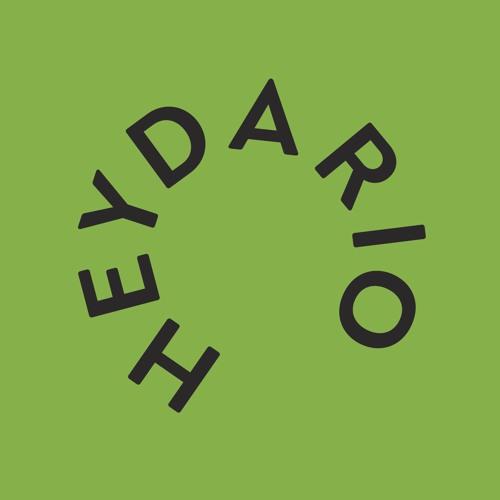 HEYDARIO - DARIO RASPUDIC's avatar