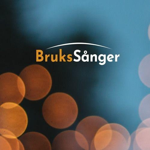 Brukssånger's avatar
