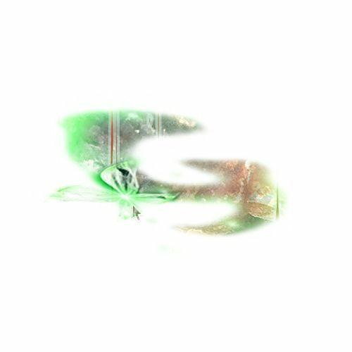Genome 6.66 Mbp's avatar