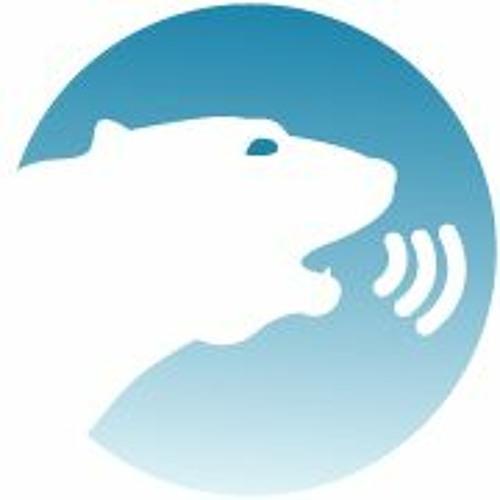 PolarVoice's avatar