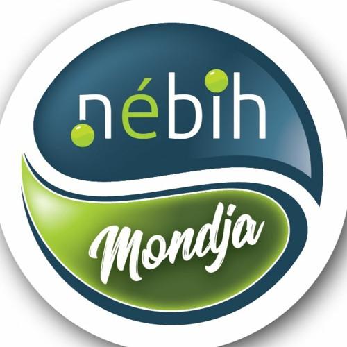 Nébih's avatar