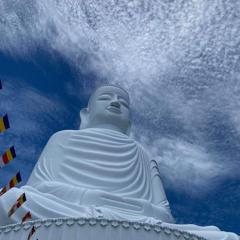 7 Câu Truyện Phật Giáo Ý Nghĩa, Thâm Thúy Hay Nhất Từng Được Nghe ( Có Lồng Tiếng Và Âm Thanh )