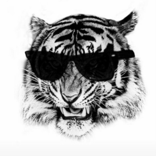 SACHA SIEFF's avatar