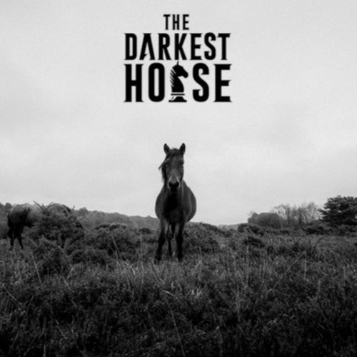 The Darkest Horse's avatar