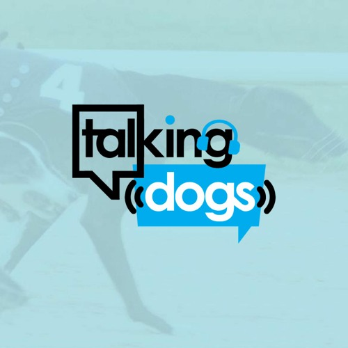 Talking Dogs on Thursday's avatar