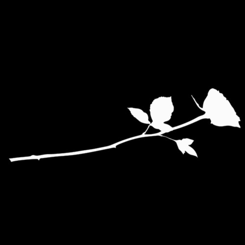 Bed of Roses's avatar