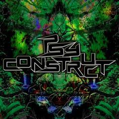 PsyConstruct