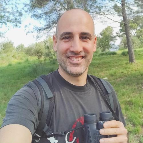 Iván Vega's avatar