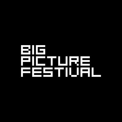 Big Picture Festival's avatar