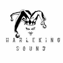 Capital Bra - Kennzeichen B-TK  HARLEKING REMIX 2020