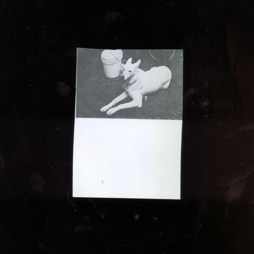 G. PAIM's avatar