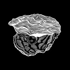 Kalahari Oyster Cult