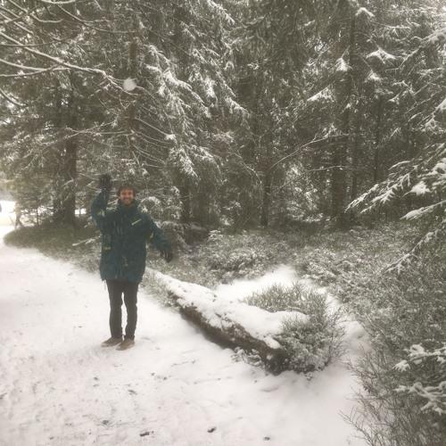 Florestan Berset's avatar