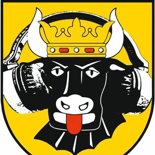 Radio Lübz's avatar