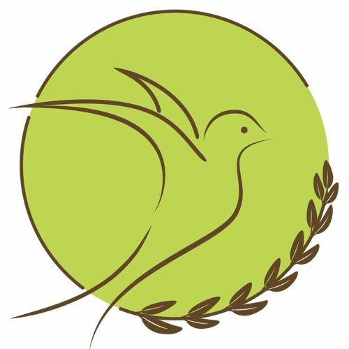 My Freedom Center's avatar
