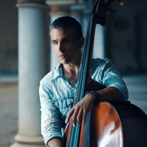 Vladimir Torres's avatar