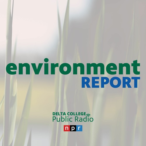 The Environment Report with Jeff Kart's avatar