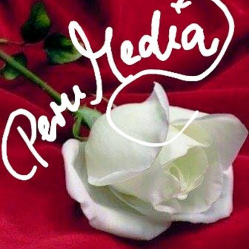 PeruMedia PRO - Charity&Love - HERZSTIMME's avatar