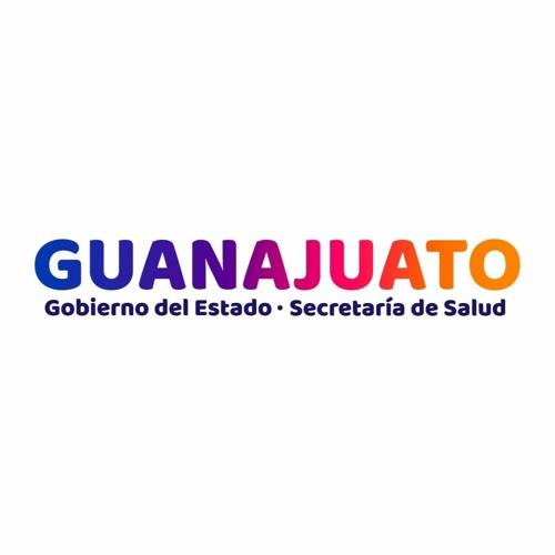 SaludGuanajuato's avatar