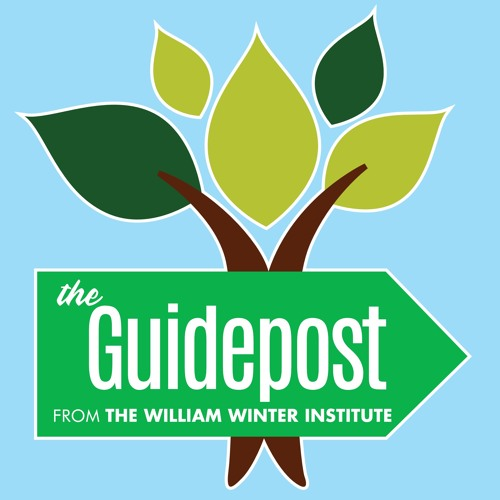 The Guidepost from William Winter Institute's avatar