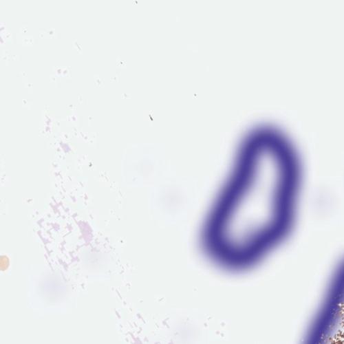 breaklab's avatar