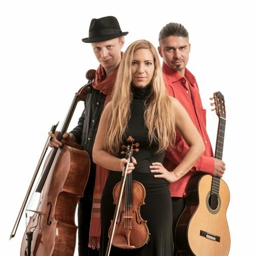 Wild Strings Trio's avatar