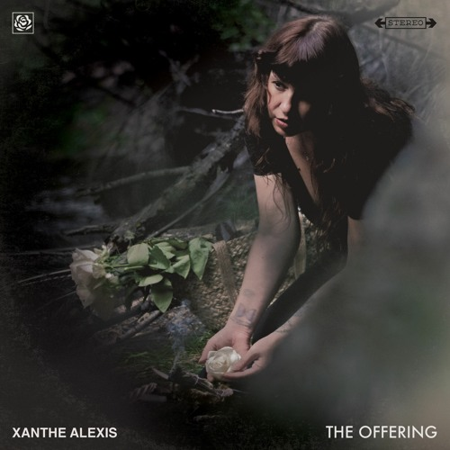 Xanthe Alexis's avatar