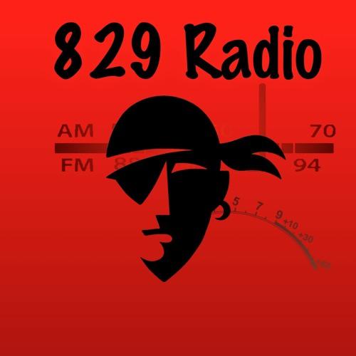 829 Radio's avatar