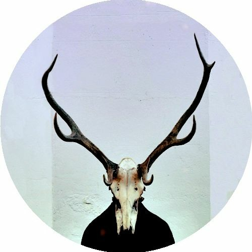 Gazelle Horn's avatar