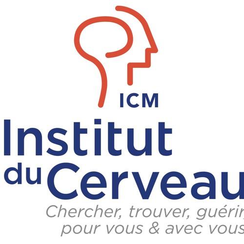 Institut du Cerveau et de la Moelle Epinière - ICM's avatar