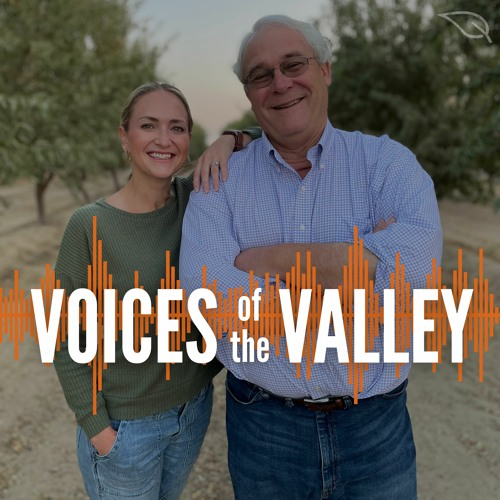 Voices of the Valley's avatar