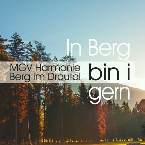 MGV Harmonie Berg im Drautal's avatar