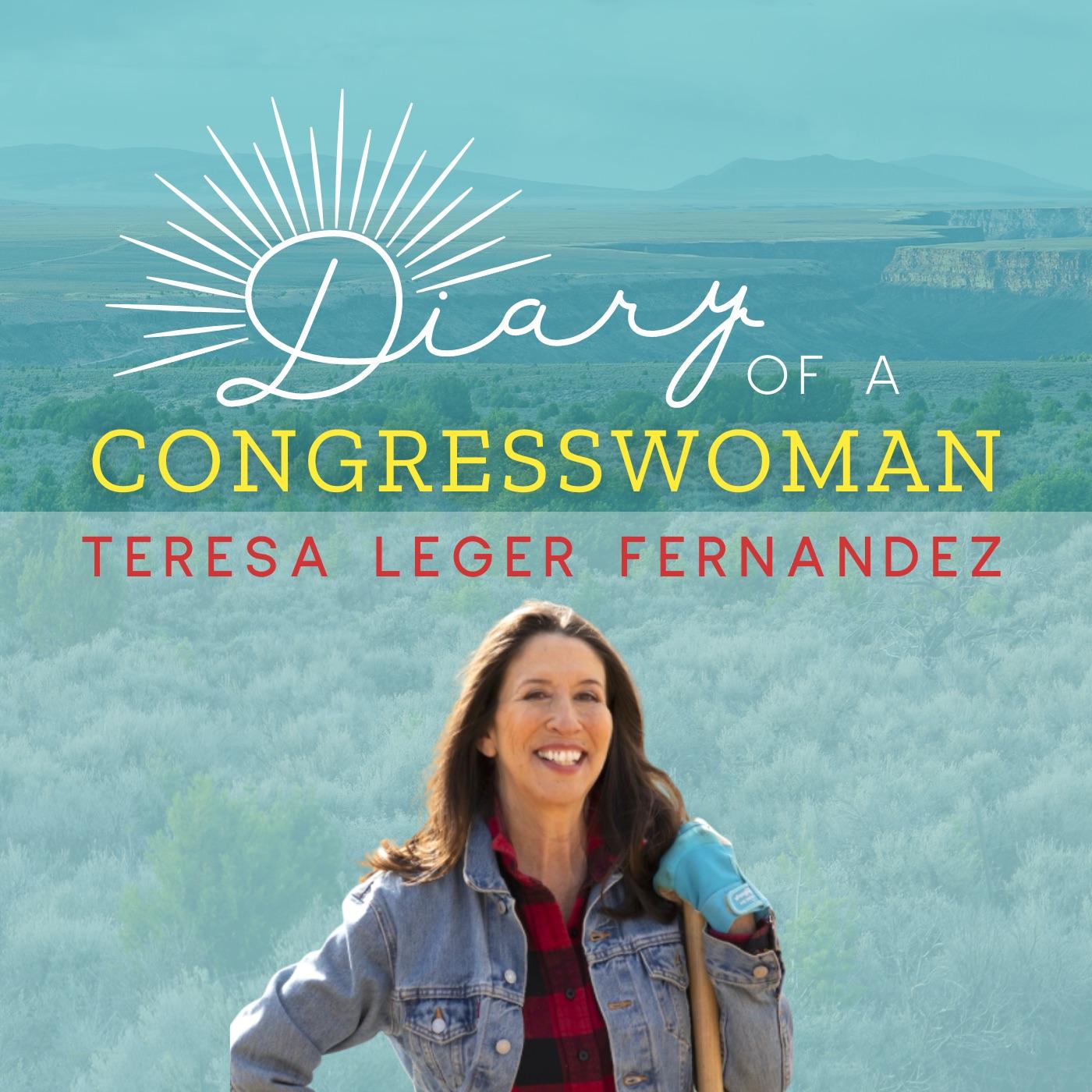 Diary of a Congresswoman