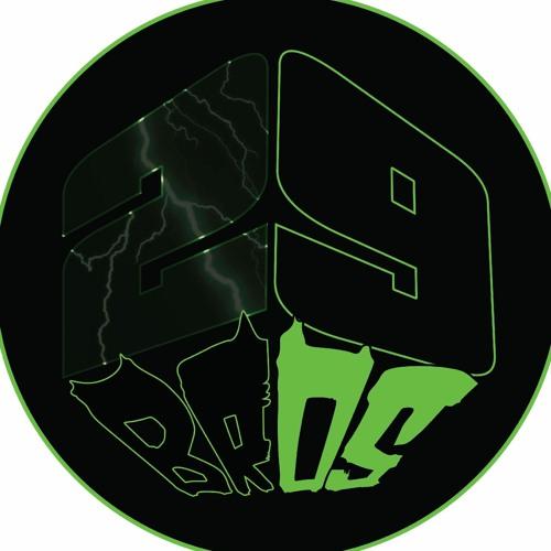 29Bros's avatar