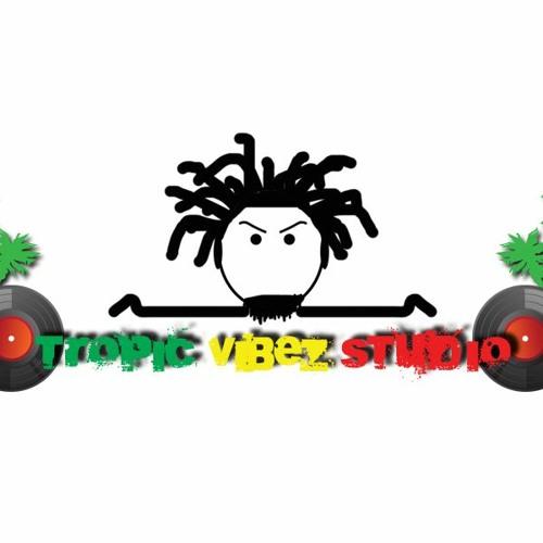 Tropic Vibez Studio's avatar
