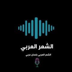 أحمد نور