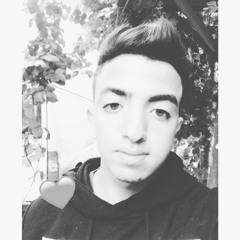 Asseel Aqel