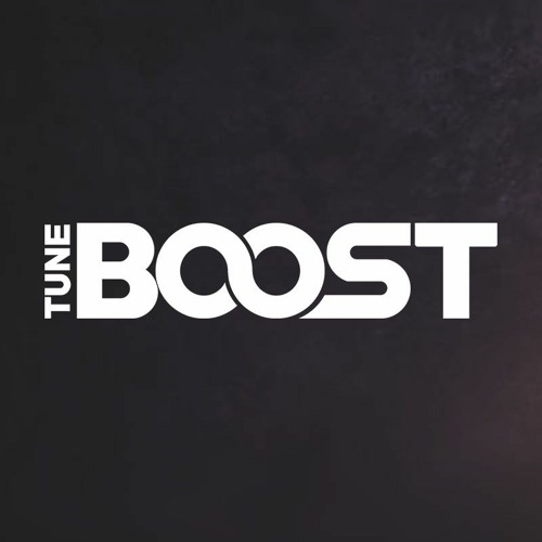 TuneBoost Support's avatar