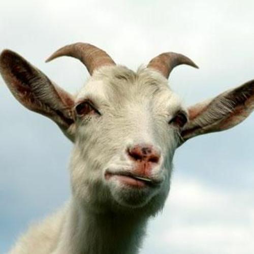 Lokua's avatar