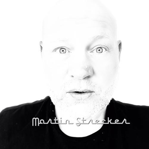 Martin Strecker's avatar