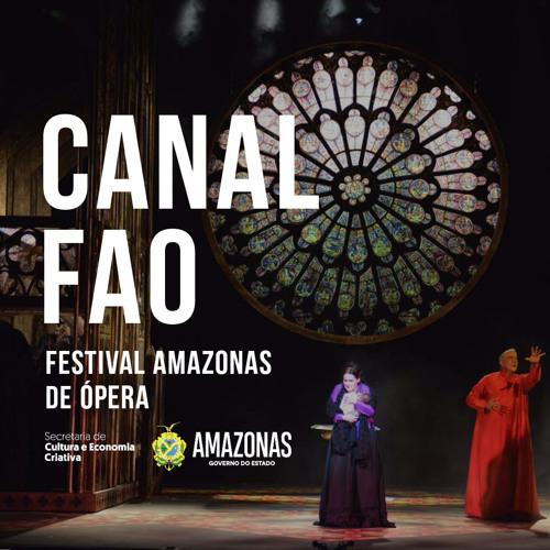 FESTIVAL AMAZONAS DE ÓPERA's avatar
