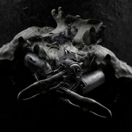 lanark artefax's avatar