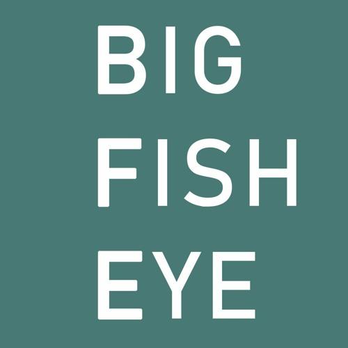 Big Fish Eye's avatar