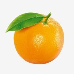 orrible.orange