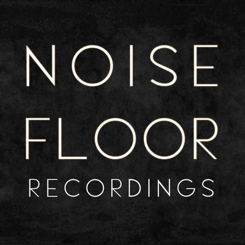 Noise Floor Recordings's avatar